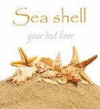 Sea Royalty Free Stock Image