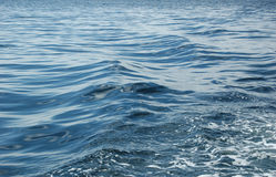 The Sea royalty free stock images