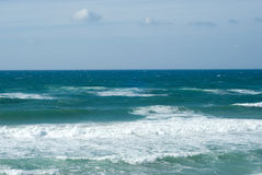 Sea. Coast of Mediterranean sea in Israel royalty free stock photography