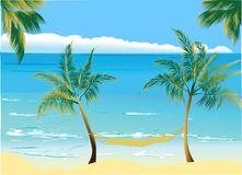 Sea. Vector image with two palm Royalty Free Stock Image