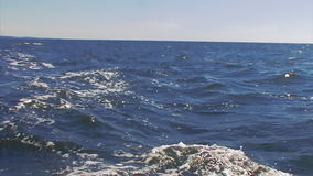 Sea abyss rises wave stock footage