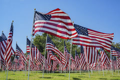 Sea of America Flags Stock Photography