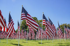 Sea of America Flags Royalty Free Stock Photography