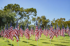 Sea of America Flags Royalty Free Stock Image