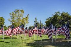 Sea of America Flags Royalty Free Stock Photo
