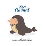 Sea animal Royalty Free Stock Image