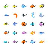 Aquatic Animals Pack vector illustration
