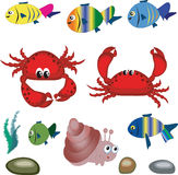 Sea animals. Marine life icons crabs,fishes, mollusk, and stones Royalty Free Stock Photography