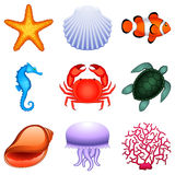 Sea animals. Royalty Free Stock Images