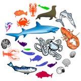 Sea animals. And underwater wildlife Stock Photo