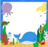 Sea animals. Illustration of group of sea animals Royalty Free Stock Photography