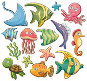 Sea Animals Stock Photography