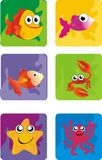 Sea animals Stock Images