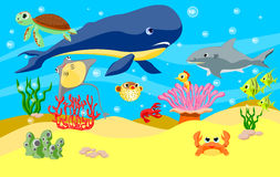 Sea animals background Stock Image
