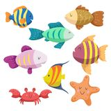 Sea animals cartoon set. Trendy design sea and ocean wildlife. Different types of fishes , starfish and funny crab. Sea animals cartoon set. Trendy design sea Royalty Free Stock Images