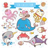 Sea Animals Collection. Royalty Free Stock Images