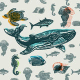 Sea animals colorful seamless  pattern. Realistic engraved style of Sea animals on old paper Stock Photography