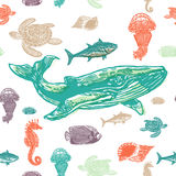 Sea animals colorful seamless  pattern. Realistic engraved style of Sea animals on white background Royalty Free Stock Photography