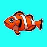 Sea animals so cute stock photo