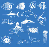 Sea animals illustration Stock Photos