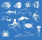 Sea animals illustration Stock Photos