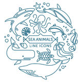 Sea animals line icons. Set of vector outline sea animals icons arranged in circle vector illustration