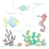 Sea animals and plants Royalty Free Stock Photo
