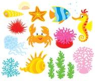 Sea animals. Set of cartoony sea animals, corals and algae, vector clip-arts on a white background Royalty Free Stock Photo