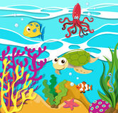 Sea animals swimming in the ocean Royalty Free Stock Image