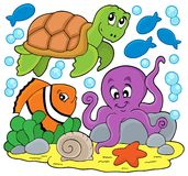 Sea animals thematic image Royalty Free Stock Image
