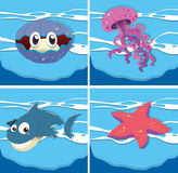 Sea animals under the ocean Royalty Free Stock Photo