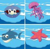 Sea animals under the ocean Royalty Free Stock Photo