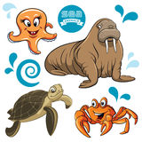 Sea Animals. Vector set of sea animals Royalty Free Stock Images