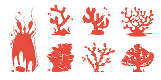 Sea aquarium coral silhouettes vector set. Silhouette red coral reef, marine undersea group of corals illustration Stock Image