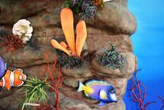 Sea Aquarium Wall Background Royalty Free Stock Image