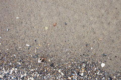 Sea background - sand, pebbles and seashells Stock Photos