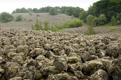 Sea of basalt. A huge slope with mossy basalt blocks in the german rhoen national park stock photos