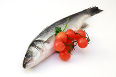 Sea bass. A sea bass with tojmatoes on white background royalty free stock photography