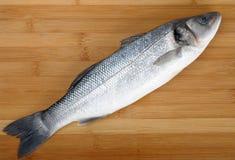 Sea bass. On a cutting board stock photography