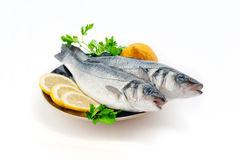 Sea bass. With lemon and parsley on the plate isolated Stock Photos