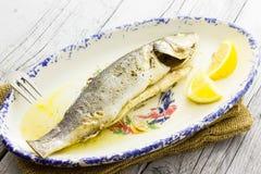 Sea bass baked Stock Image