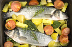 Sea bass cooked Royalty Free Stock Photography