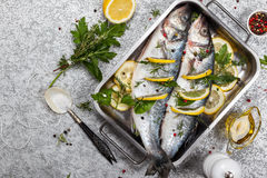 Sea bass before cooking Stock Photography