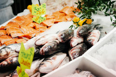 Sea bass on crushed ice at fish market Stock Photo
