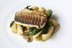 Sea bass filet on potato gnocchi with spinach. Sea bass filet on potato gnocchi, mushrooms and spinach royalty free stock image