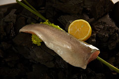 Sea bass fillet Stock Photography