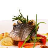 Sea bass fillet with spring vegetables Stock Images