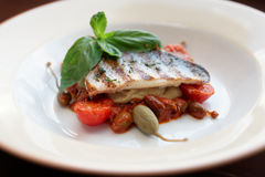 Sea bass fillet with tomato sauce and capers Royalty Free Stock Photography