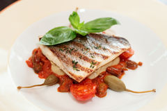 Sea bass fillet with tomato sauce and capers Royalty Free Stock Images