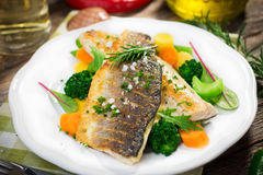 Sea bass fillet with vegetables Stock Image